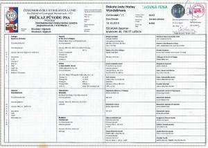 Rodokmen-page-001